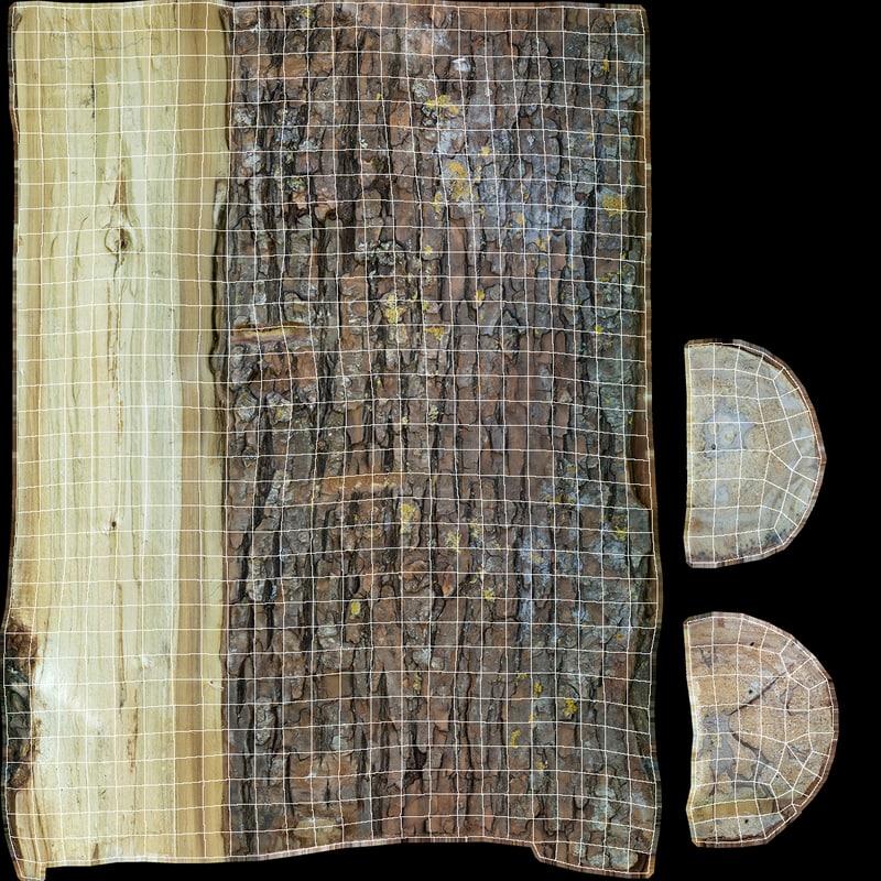 Pine Log 3D model