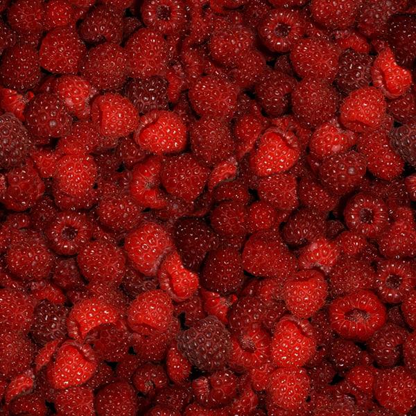 Raspberry Birch Box 3D model