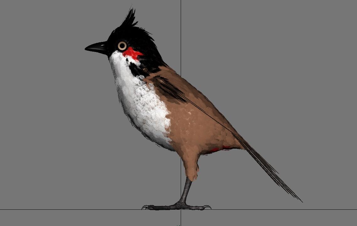 Red Whisker Bird 3D model
