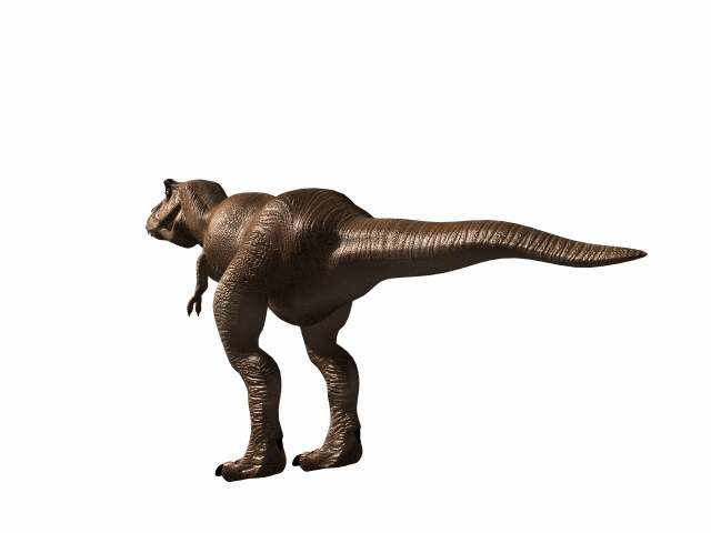 Tyranosaurus 3D model