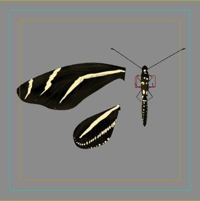 Zebra Butterfly 3D model