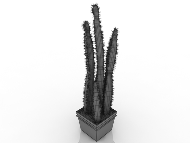 cactus 3d model free download