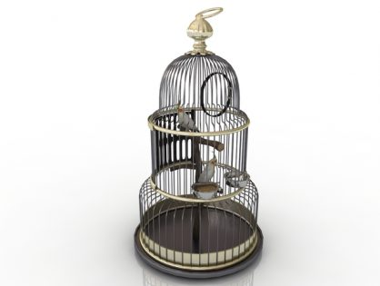 Cage with a parrot