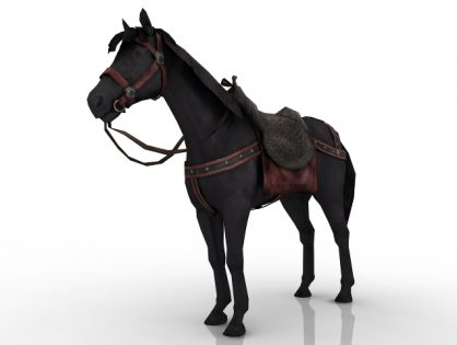 Equipped Horse