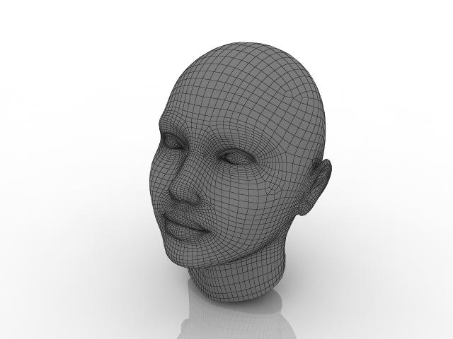 Woman's head 3d model