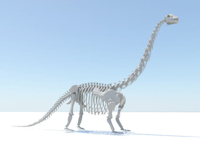 Apatosaurus Skeleton 3D model