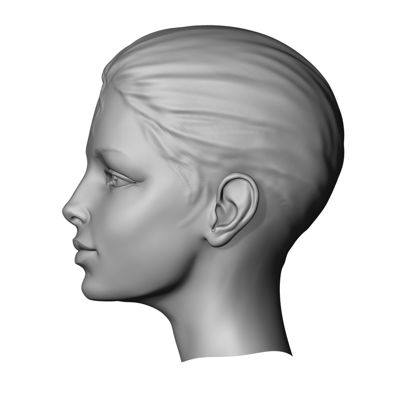 Beauty head 3D model