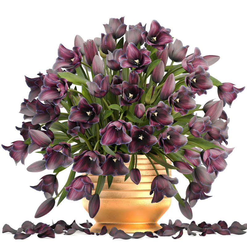 Bouquet of tulips 3D model