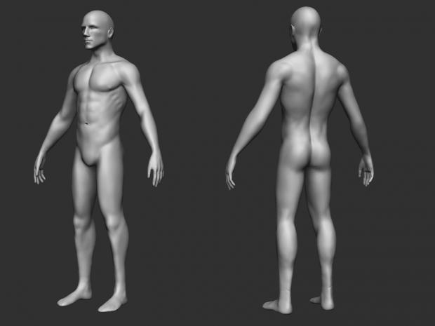 Male Base 3D model
