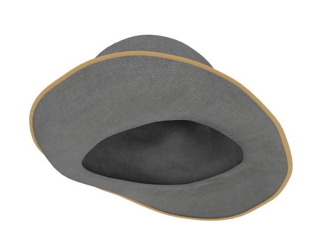 Gray hat 3D model