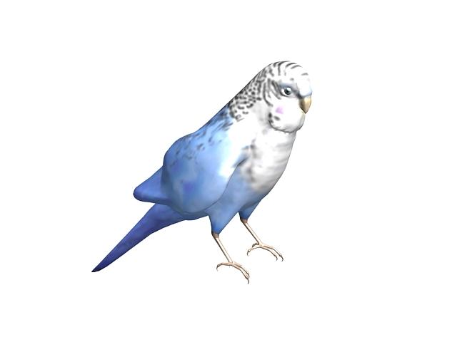 Blue parrot 3D model