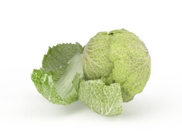 Celery cabbage 3d model