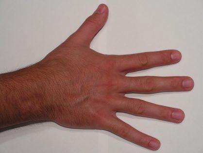 Human right hand