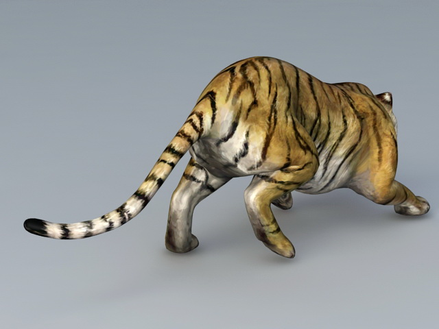 Attack Tiger 3D model