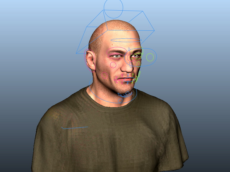 Bald head man 3D model