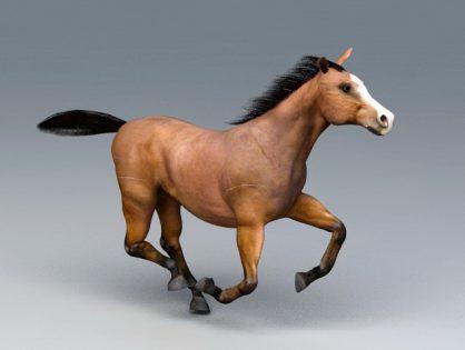 Beautiful Running Horse 3D model