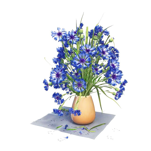 Blue flowers in vase 3D model