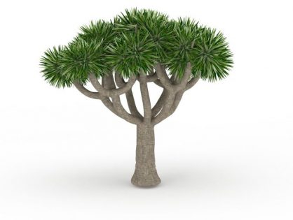 Trees 3D models Download for Free