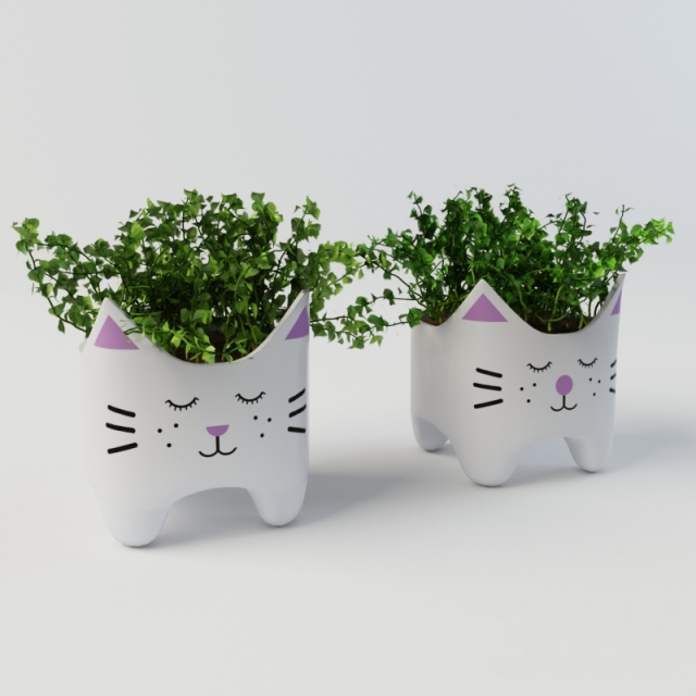 Plants in vases 3D model