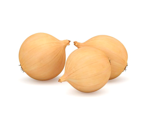 Yellow onions 3D model