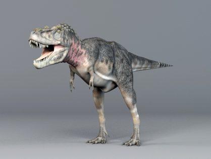 Tarbosaurus Dinosaur 3D model